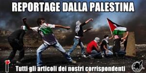 banner_palestina (1)